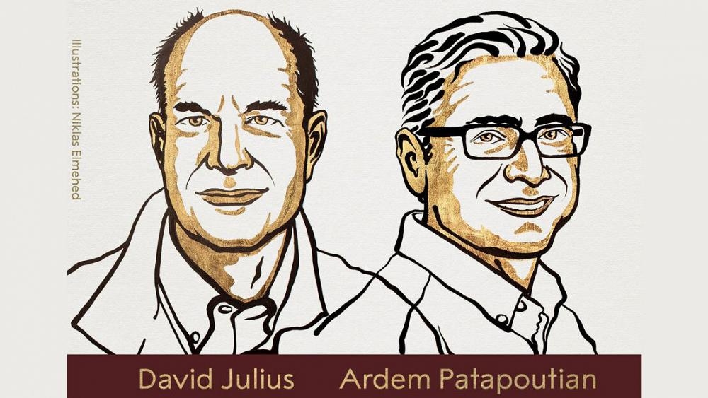Hadiah Nobel dalam Fisiologi atau Kedokteran diberikan kepada David Julius dan Ardem Patapoutian