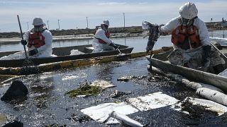 عمال يحاولون تنظيف المياه بعد تسرب للنفط في شاطئ كاليفورنيا الأمريكية