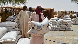 Niger : près de 600 000 personnes exposées à l'insécurité alimentaire