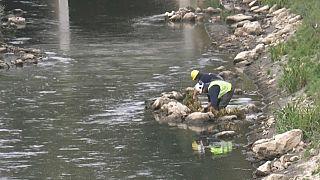 Réaménagement d'une partie de la rivière La Senne à Bruxelles, en Belgique, 27 septembre 2021