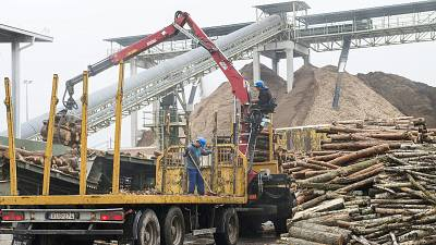 100 charities urge the EU to end use of some biomass as 'renewable' energy