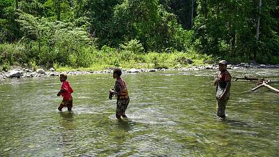 Natural rivers and intact rainforest areas in the Bainings region of East New Britain Province, Papua New Guinea.