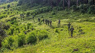 RDC : huit enlèvements en deux jours