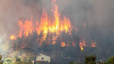 Forest fire in Hisaronu neighbourhood of Marmaris resort town in Turkey, on August 2, 2021.