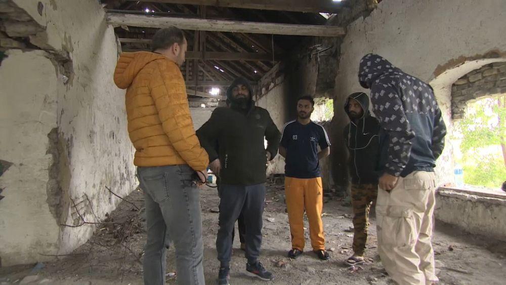 Afganos entre los cientos de migrantes varados en la frontera entre Serbia y Hungría que buscan ingresar a la UE