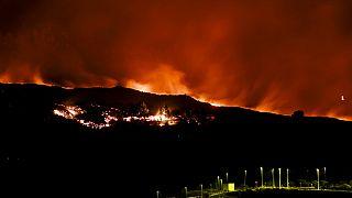 La Palma: Neuer Lavastrom verschlingt Häuser und Strommasten