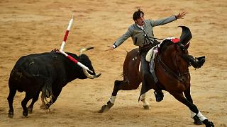 Some forms of the game are considered blood sport, but in Spain bullfighting is a cultural event