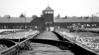 El Foro Internacional de la Memoria del Holocausto alerta del auge del antisemitismo en las redes
