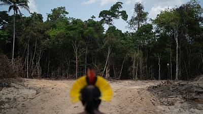 Krimej Indigenous Chief Kadjyre Kayapo looks out at a path created by loggers in Altamira, Para state, Brazil.