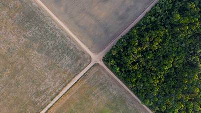 A fragment of Amazon rainforest stands next to soy fields in Belterra, Para state, Brazil.