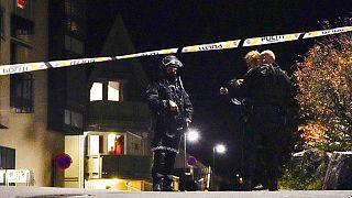 Αστυνομικές δυνάμεις στο σημείο της επίθεσης στη Νορβηγία
