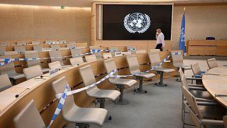 Birleşmiş Milletler İnsan Hakları Konseyi