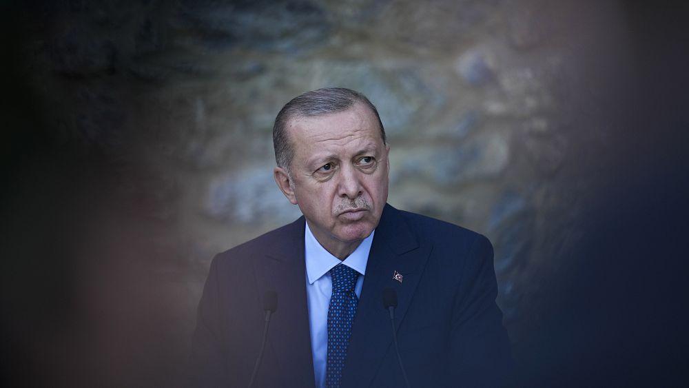 Tribunal europeo condena la ley turca que prohíbe los insultos a Erdogan