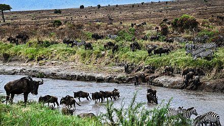 Kenya's Masai Mara under threat from climate change