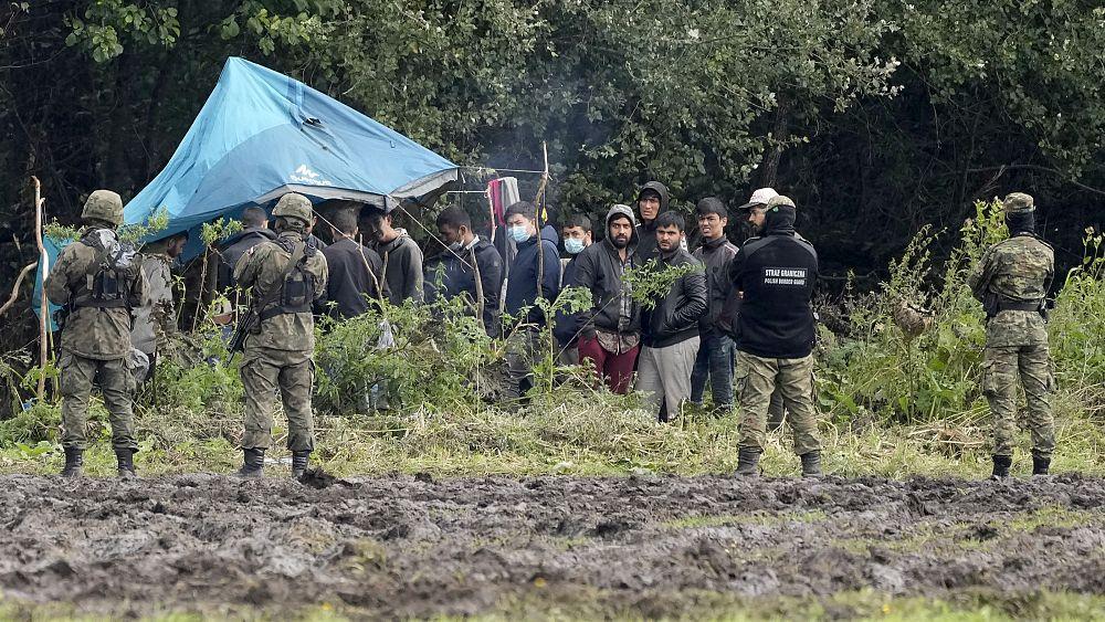 Senat Polandia akan memberikan suara pada tembok €350 juta di sepanjang perbatasan Belarusia