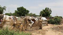 Nigeria : au moins 18 villageois tués dans une mosquée