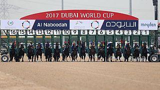 Arrogate wins Dubai Cup