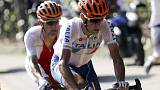 Cycling: Nibali is only Italian with talent, says Cipollini