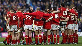 Wales face All Blacks, Wallabies and Springboks in autumn series