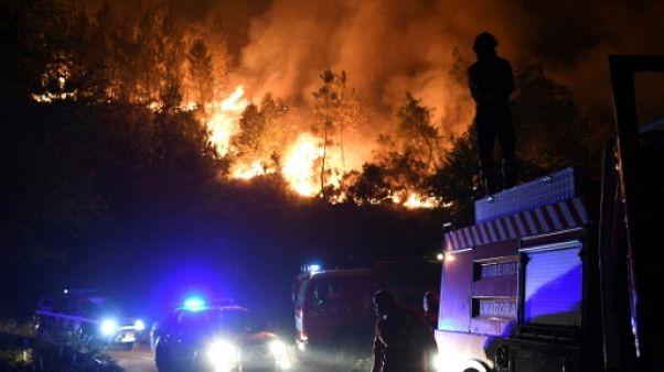 Feux de forêt au Portugal: 61.600 hectares partis en fumée