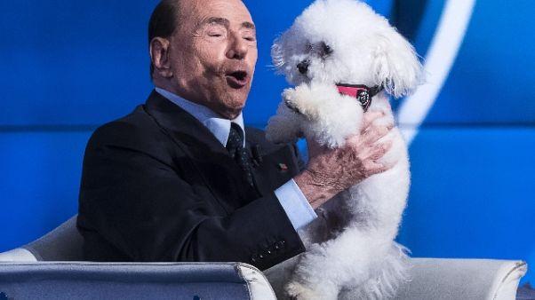 Berlusconi, no maltrattamenti di animali