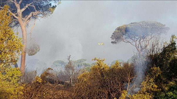Incendi: De Vincenti, è uno sconcio
