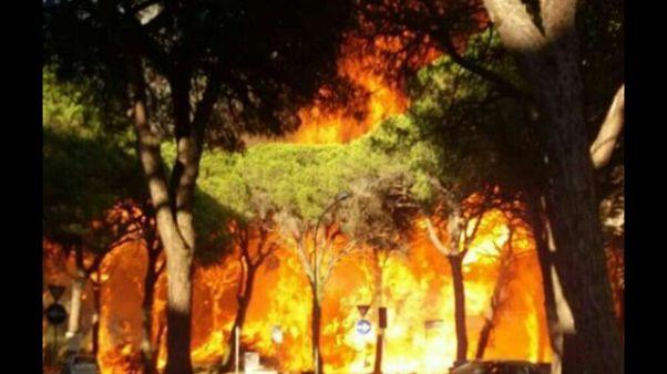 Toscana, stato emergenza per incendi
