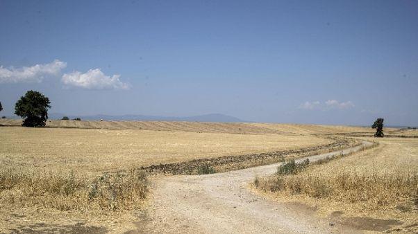 Siccità,Toscana a rischio 50% produzioni