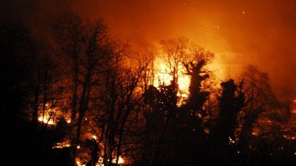 Siccità: Veneto, rischi incendi boschivi