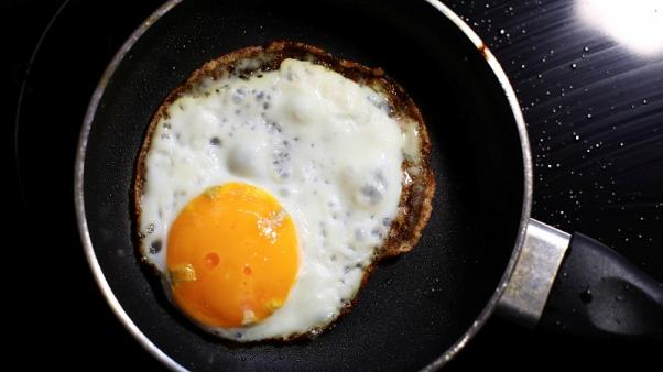 Germany concerned Belgium withheld data about contaminated eggs