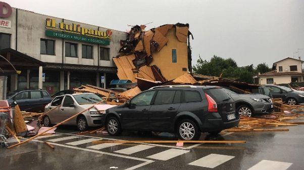 Maltempo: danni per alberi su strade