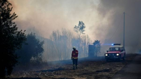 Incendies au Portugal: relative accalmie avant un week-end à risque