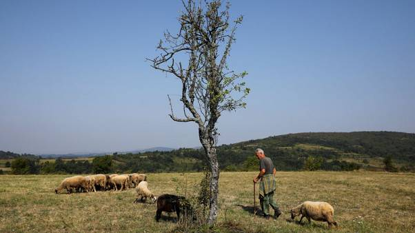 Depopulation turns Serbian villages into ghost towns