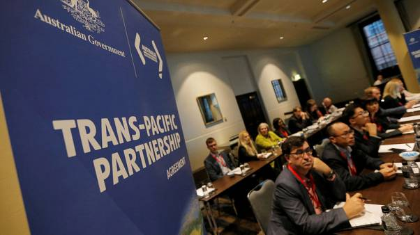 TPP countries consider amendments to stalled trade deal - sources