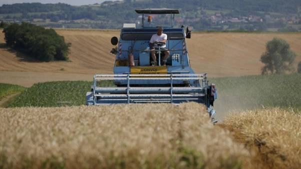 Euro zone producer prices rise slower than expected in July