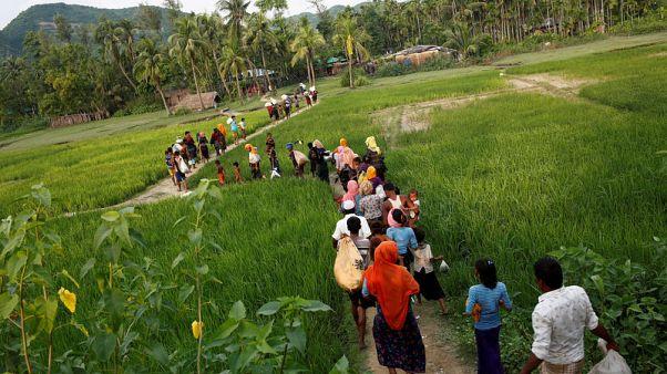 Exclusive - Myanmar laying landmines near Bangladesh border: government sources in Dhaka