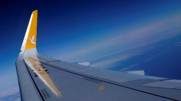 Turkey's Pegasus may add European flights as security concerns ease