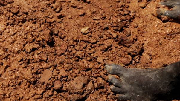 Brazilians toil for gold in illegal Amazon mines