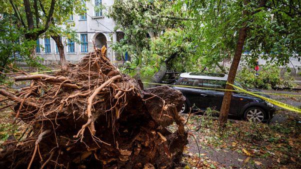 Storms tear through western Romania, five dead, dozens injured