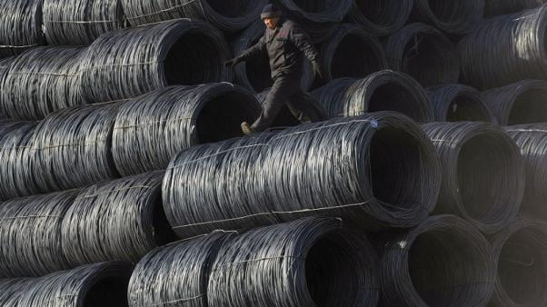 Hedge funds bet on bright future for metals
