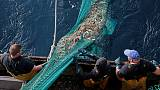 UK fishermen see Brexit bonanza, but there's a catch