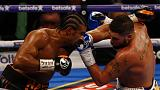 Haye all set for rematch with Bellew