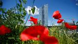 Euro zone growth gaining momentum but inflation subdued - ECB Bulletin