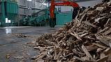 Japan fires up biomass energy, but fuel shortage looms