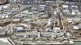 Japan court rules Tepco liable over Fukushima - media