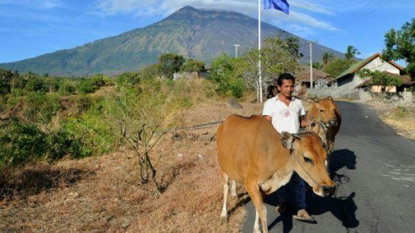 Volcan à Bali: l'activité sismique augmente, 57.000 habitants évacués
