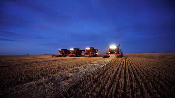 Special Report - Drowning in grain: How Big Ag sowed seeds of a profit-slashing glut