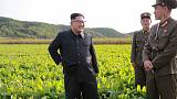 Russian firm appears to be offering internet connection to North Korea - 38 North