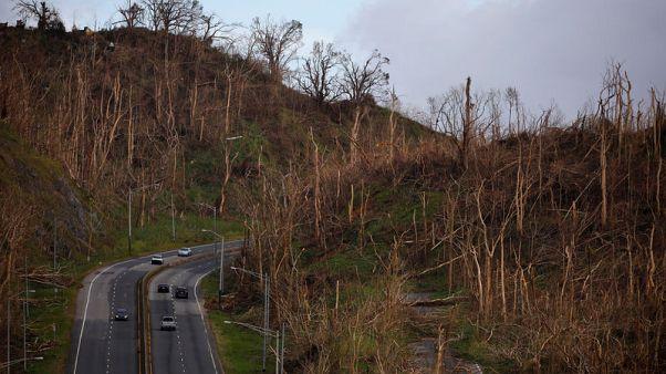 Hurricane churns up debate: should Puerto Rico be a U.S. state?