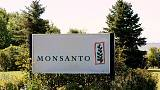 Indian state revokes order to check planting of Monsanto GM cotton